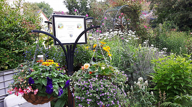 Gold for Deed House garden
